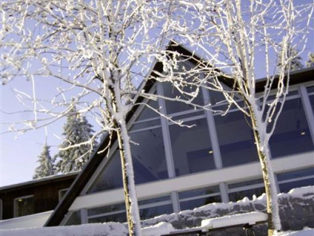Hotel Bellevue - zimi