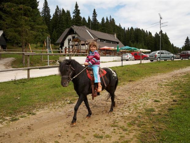 Koča - jahanje ponija