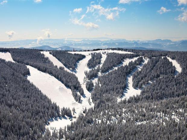 Ski spustovi